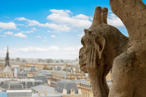 Gargoyle on Notre Dame Cathedral, France Photographic Print