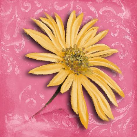 Blooming Daisy II Art Print