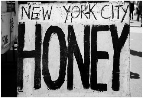 New York City Honey Union Square Market Poster