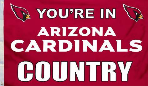NFL Arizona Cardinals Flag with Grommets Flag