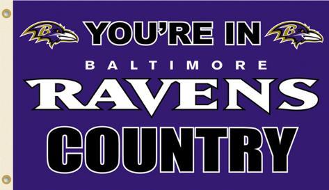 NFL Baltimore Ravens Flag with Grommets Flag
