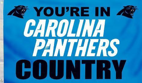 NFL Carolina Panthers Flag with Grommets Flag