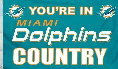 NFL Miami Dolphins Country Flag with Grommets Flag