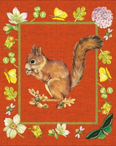 Nice Animals Chipmunks Art Print