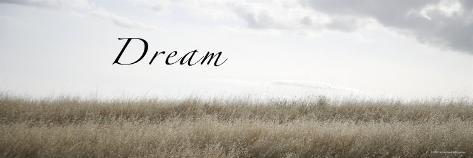 Dream Meadow Photo