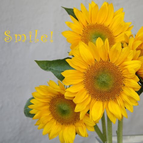 Smile: Sunflower Bouquet Photo
