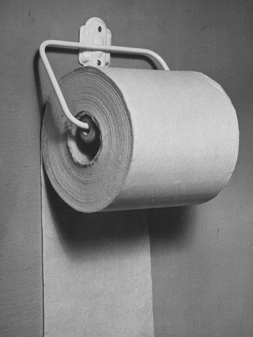 Roll of Toilet Paper, Illustrating the Shortage Photographic Print