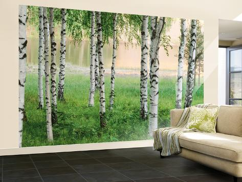 Nordic forest wall mural wallpaper mural at for Murales de papel pintado