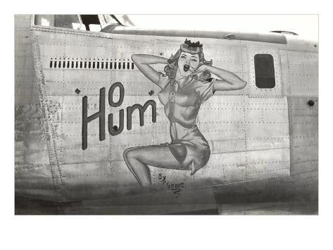 Nose Art, Ho Hum, Pin-UP Art Print