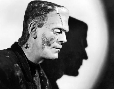 novia de Frankenstein, La Fotografía