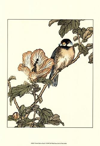 Oriental Bird on Branch I Art Print