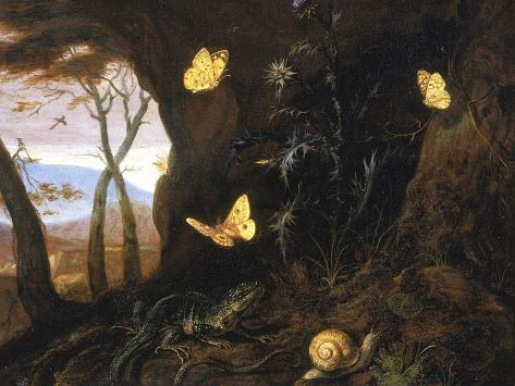 Underbrush with Reptiles and Butterflies, Uffizi Gallery, Florence Giclee Print