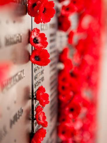 War memorial red poppy flower photographic print by ozhappysnappy war memorial red poppy flower mightylinksfo