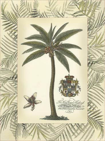 Palm in Bamboo Frame I Art Print