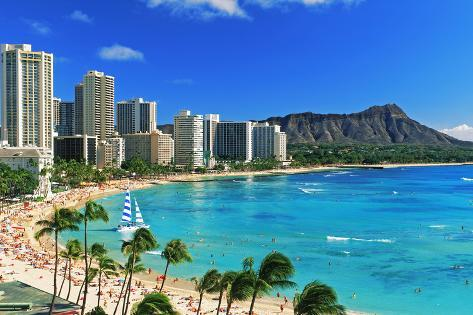 Palm Trees On The Beach Diamond Head Waikiki Oahu Honolulu Hawaii Usa Photographic Print At Allposters