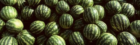 Close-up of Watermelons, Eger, Eastern Hungary Photographic Print