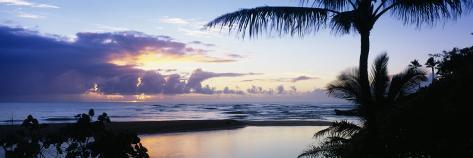 Palm Tree on the Beach, Wailua Bay, Kauai, Hawaii, USA Photographic Print