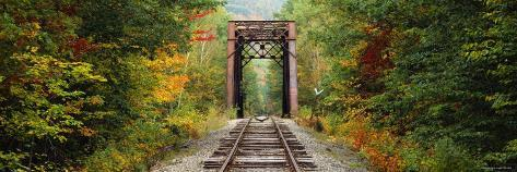 Railroad Track Passing Through a Forest, White Mountain National Forest, New Hampshire, USA Photographic Print