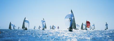Sailboat Race, Key West Florida, USA Photographic Print