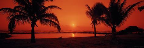 Silhouette of Palm Trees on the Beach at Dusk, Lydgate Park, Kauai, Hawaii, USA Photographic Print