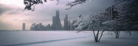 Snow Covered Tree at North Avenue Beach, Chicago, Illinois, USA Photographic Print