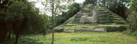 Temple of the Jaguar, Lamanai, Belize Photographic Print
