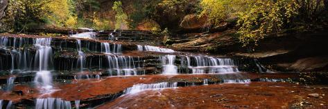 Waterfall in a Forest, North Creek, Zion National Park, Utah, USA Photographic Print
