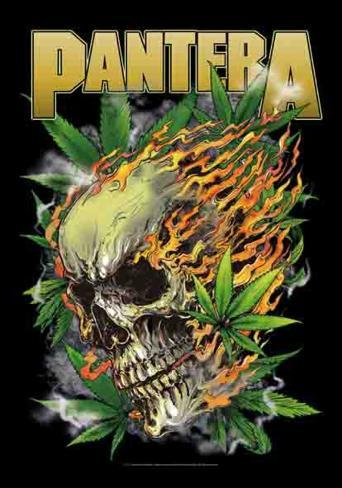 Pantera - Skull Leaf Fabric Poster