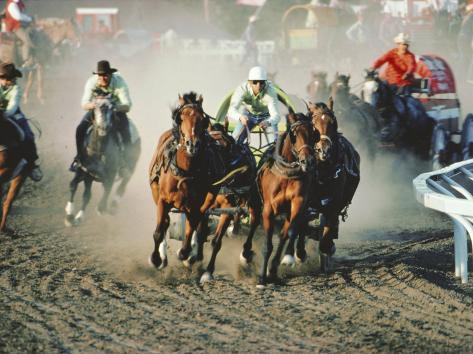 Chuck Wagon Race, Calgary Stampede, Alberta, Canada Photographic Print