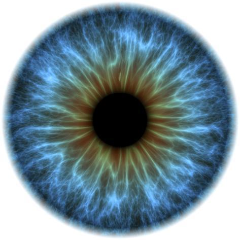 オールポスターズの pasieka eye iris 写真プリント