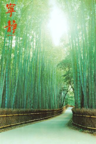 Pathways Poster
