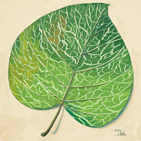 Veins of Green Leaf on Cream II Stampa artistica