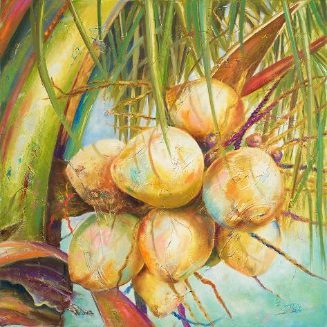 Patricia's Coconuts I Art Print