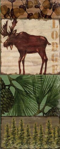 Nature Trail III Art Print