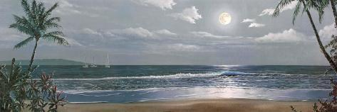 Moonlit Paradise II Art Print