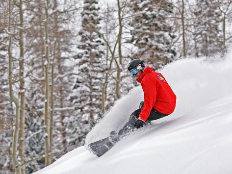 Snowboarder Enjoying Deep Fresh Powder at Brighton Ski Resort Photographic Print