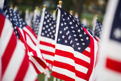 American Flags Photographic Print