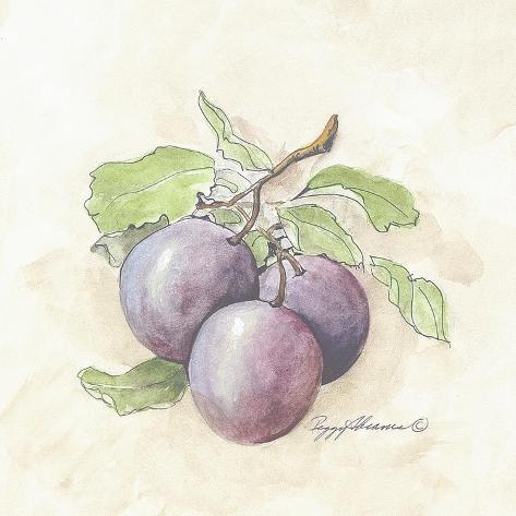Plums Stretched Canvas Print