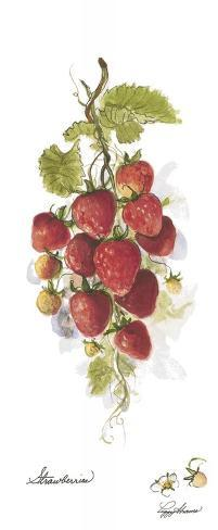 Strawberries Stretched Canvas Print