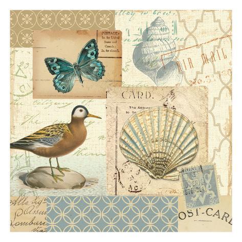Coastal Collage I Premium Giclee Print