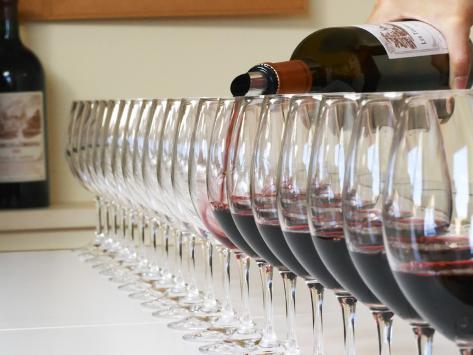 Row of Glasses for Tasting, Chateau Baron Pichon Longueville, Pauillac, Medoc, Bordeaux, France Photographic Print