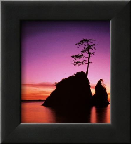 Persistence: Sunset Framed Art Print