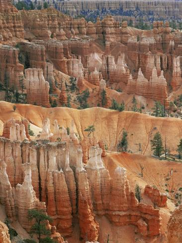 Hoodoo Sandstone Structures, Bryce Canyon National Park, Utah, USA Photographic Print