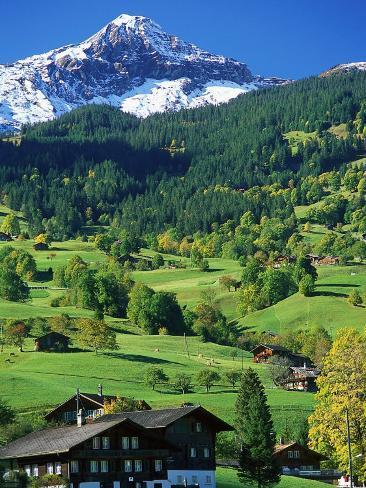 Grindewald, Switzerland Photographic Print