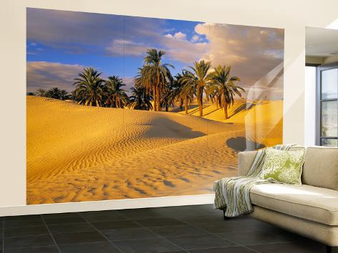 Sand Dunes and Oasis, Desert, Tunisia Wall Mural – Large