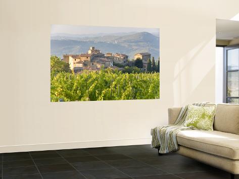 Vineyard and Village, Volpaia, Tuscany, Italy Wall Mural
