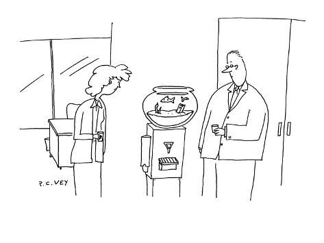 Man and woman stare at the water cooler in their office; there is a fish b… - Cartoon Premium Giclee Print