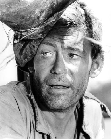Peter O'Toole - Murphy's War Photo