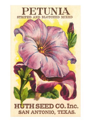 Petunia Seed Packet Art Print