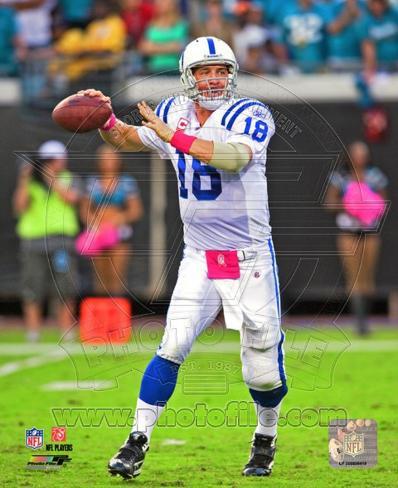 Peyton Manning 2010 Action Photo